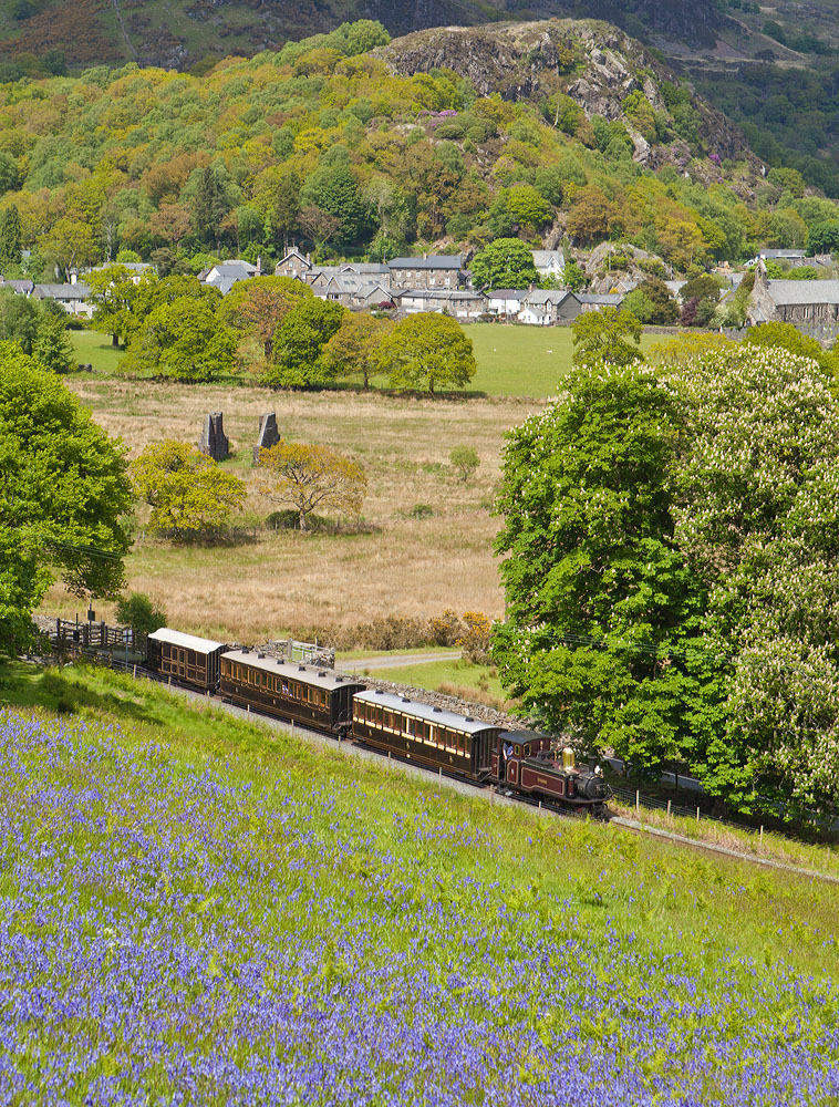 blubells and trains
